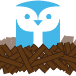 nest-owl